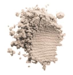 Clinique Blend FacePowder/Brush Transparency Neutr