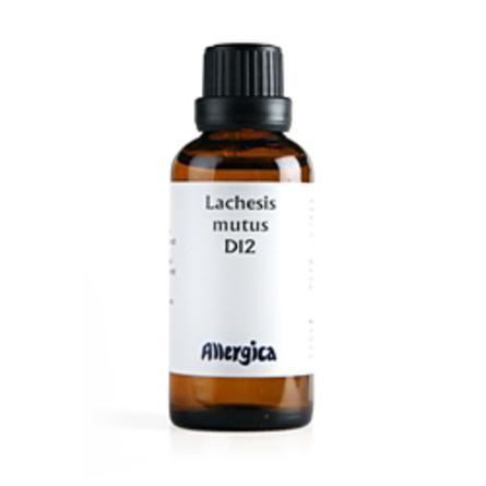 Lachesis D12 50 ml