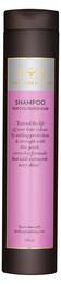 Lernberger & Stafsing Shampoo for Coloured Hair 250 ml