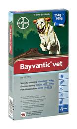 Bayvantic vet. til hunde25-40 kg