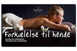 BELLEVUE FORKÆLELSE TIL HENDE
