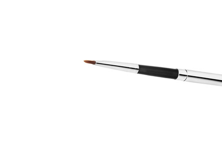 MAC Lip Brush & Covered 316