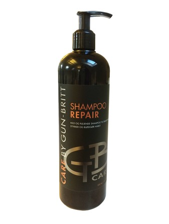 Gun-Britt Care by Repair Shampoo 500 ml