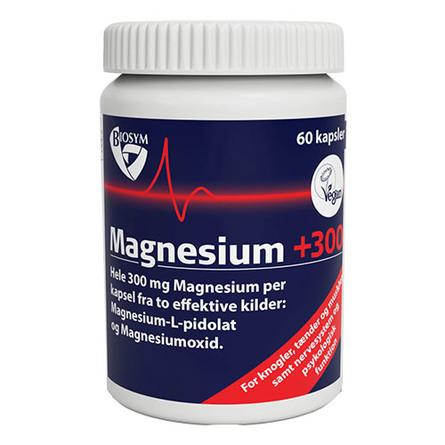 Magnesium +300 60 kap