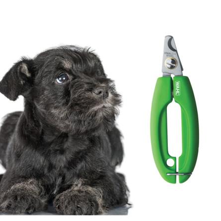 Wahl Hundenegleklipper Professional