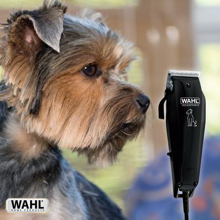 Wahl Hundeklipper Basic
