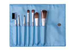 Cosmetic Brush Set blue