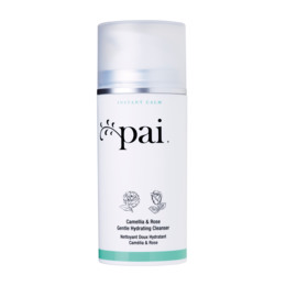 Pai Skincare Camellia & Rose Gentle Hydrating Cleanser 100 ml