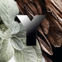 Yves Saint Laurent Y Eau de Parfum 40 ml