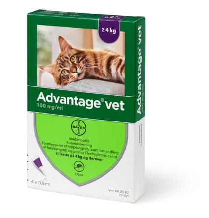 Advantage Vet til katte på 4 kg og derover