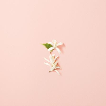 Giorgio Armani Si Fiori Eau de Parfum 30 ml