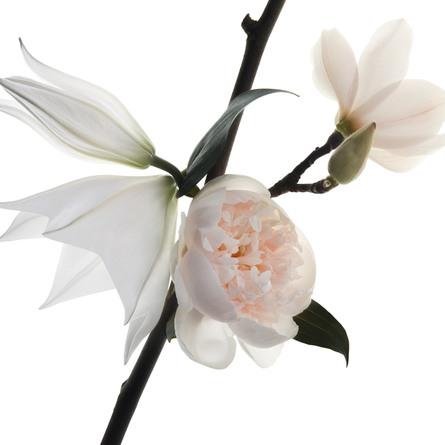 Yves Saint Laurent Mon Paris Floral Eau de Parfum 30 ml