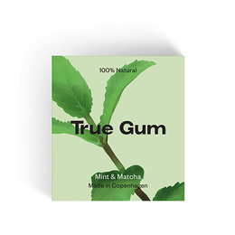 True Gum Mint & Matcha 20 gr.