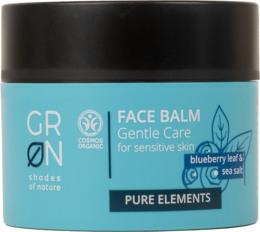 Grøn Face Balm Blueberry & Sea Salt 50 ml