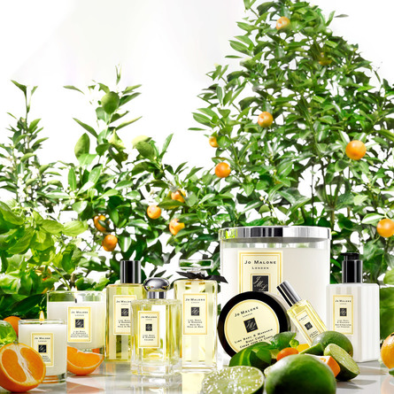 Jo Malone London Lime Basil & Mandarin Body & Hand Lotion 250 ml