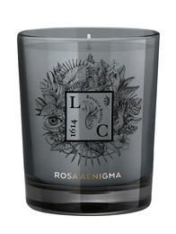 Rosa Aegnigma