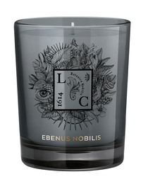 Ebenus Nobilis