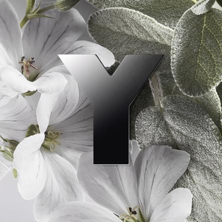 Yves Saint Laurent Y Eau de Parfum 60 ml