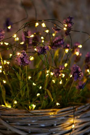 Sirius Knirke Lyskæde 40 Lys Klart varmt lys