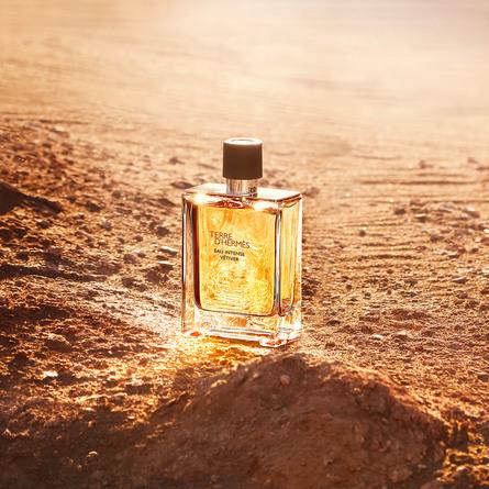 HERMÈS Terre d'Hermès Eau Intense Vetiver Eau de Parfum 100 ml