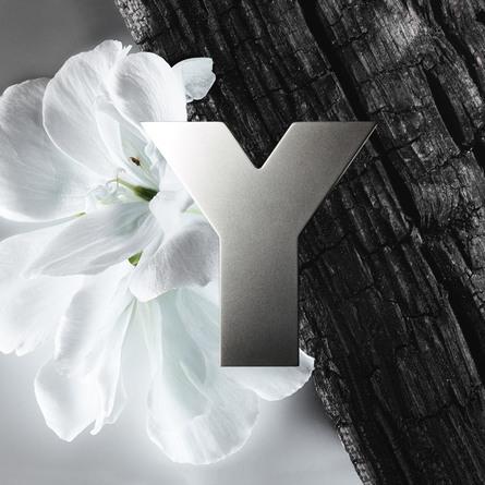 Yves Saint Laurent Y Men Deodorant Stick 75 g