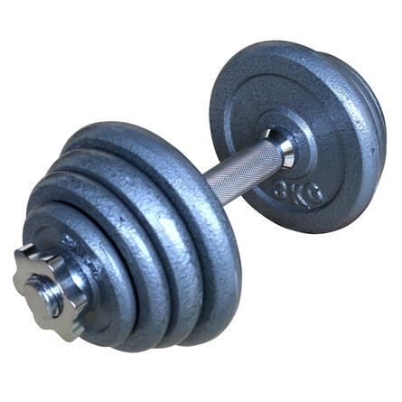 Titan Life træningsudstyr Håndvægt Justerbar Cast Iron 15 kg