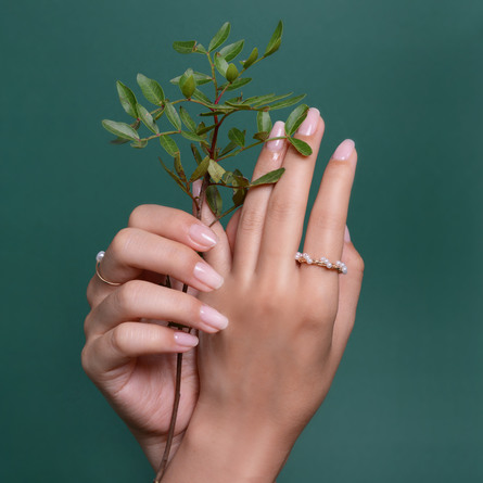 Le mini macaron Plant Power Treatment