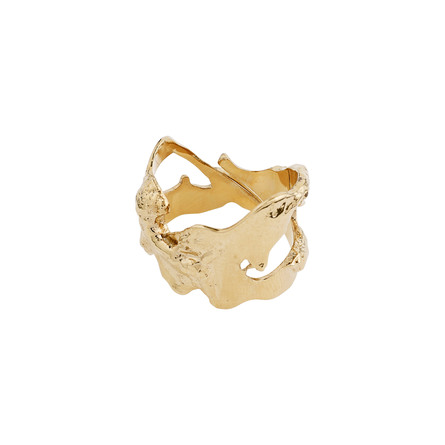 Pilgrim Ring Compass Guld Belagt