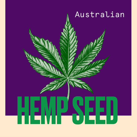 Aussie Hemp Oil 100 ml