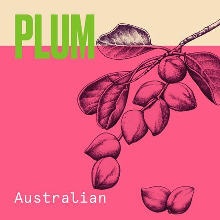 Aussie Aussome Volume Shampoo Til Fladt Hår 300 ml