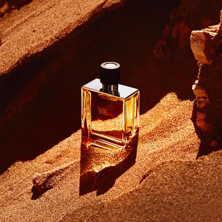 HERMÈS Terre d'Hermès Perfume 75 ml