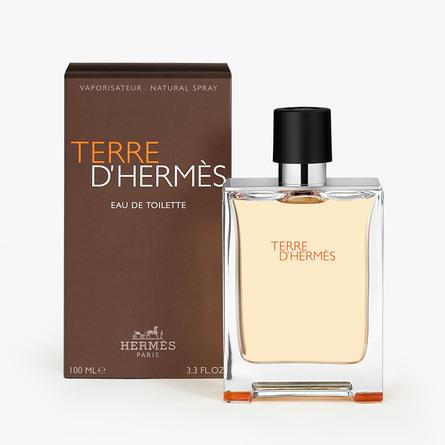 HERMÈS Terre d'Hermès Eau de Toilette 100 ml